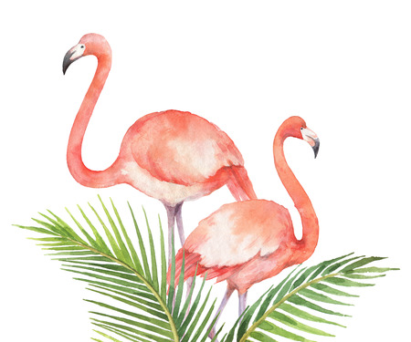 Watercolor card of tropical leaves and the pink Flamingo isolated on white background. 版權商用圖片