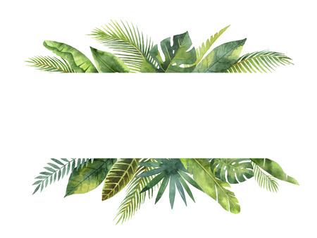 Feuilles et branches tropicales de la feuille d'aquarelle isolées sur fond blanc. Banque d'images - 80733082