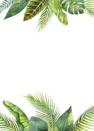 Watercolor rectangular frame tropical leaves and branches isolated on white background. Banco de Imagens