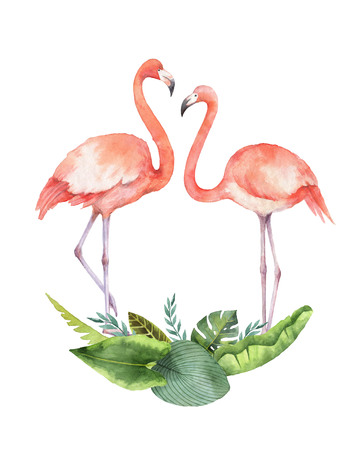 Carte aquarelle de feuilles tropicales et le Flamant rose isolé sur fond blanc. Banque d'images - 81700212