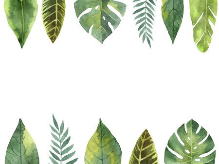 水彩バナー熱帯の葉し、枝が白い背景に分離します。