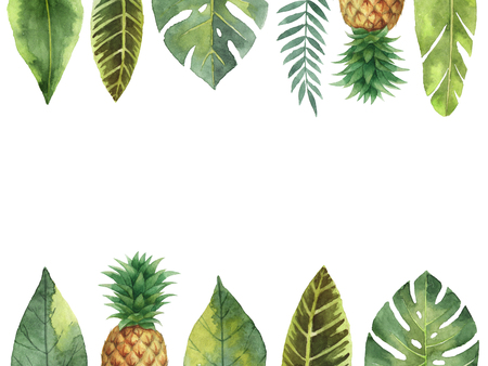 Watercolor banner tropical leaves and pineapple isolated on white background. 版權商用圖片