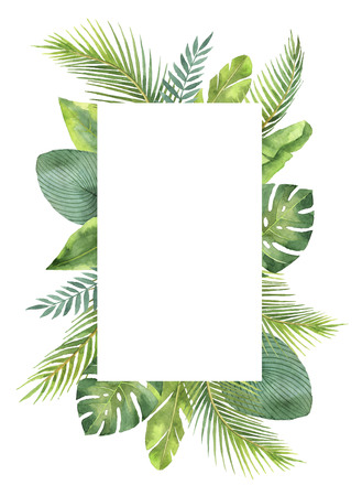 水彩画フレーム熱帯の葉し、枝が白い背景に分離します。