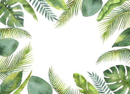 수채화 프레임 열 대 나뭇잎과 흰색 배경에 고립 된 분기.