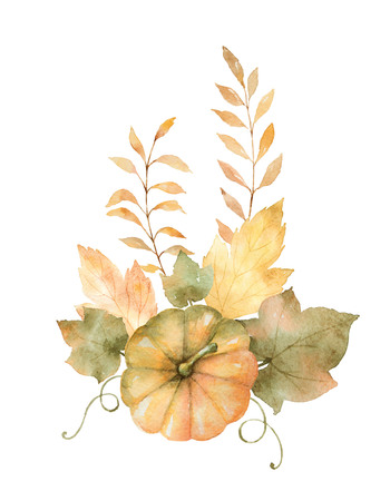 Watercolor autumn bouquet of leaves, branches and pumpkins isolated on white background. Stok Fotoğraf