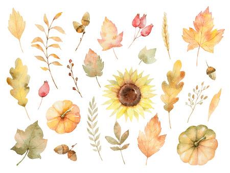 Aquarel herfst set bladeren, takken, bloemen en pompoenen geïsoleerd op een witte achtergrond. Stockfoto
