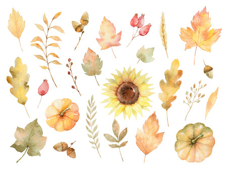 Watercolor autumn set of leaves, branches, flowers and pumpkins isolated on white background. Stok Fotoğraf - 82309735