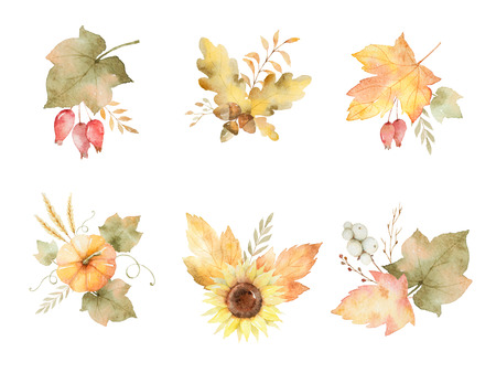 Watercolor autumn set of leaves, branches, flowers and pumpkins isolated on white background.