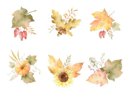 Conjunto acuarela otoño de hojas, ramas, flores y calabazas aisladas sobre fondo blanco. Foto de archivo