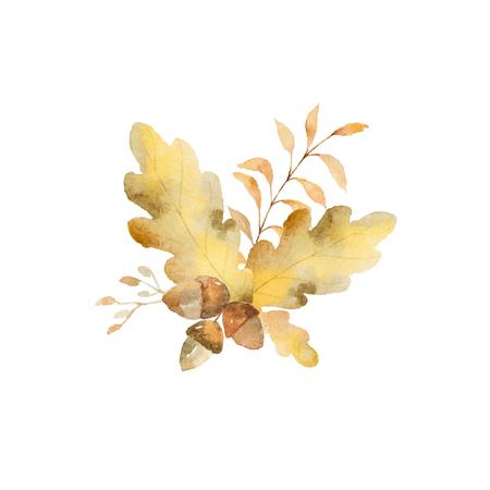 수채화 가을 분기 및 오크 잎 흰색 배경에 고립의 꽃다발. 스톡 콘텐츠 - 82871982