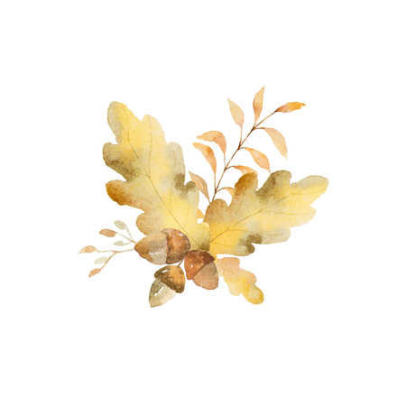 Watercolor autumn bouquet of branches and oak leaves isolated on white background.