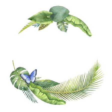 Couronnes d'aquarelle feuilles tropicales et branches isolées sur fond blanc. Banque d'images - 83880423