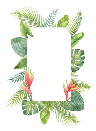 Watercolor rectangular frame tropical leaves and branches isolated on white background. Stok Fotoğraf