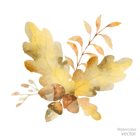 Watercolor autumn bouquet of branches and oak leaves isolated on white . Thanksgiving illustration for your design.