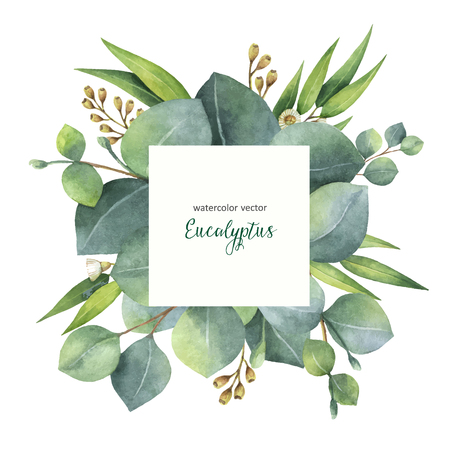 수채화 벡터 손을 유칼립투스 나뭇잎과 분기와 사각형 화 환을 그린. 치유 카드, 결혼식 초대장, 꽃 텍스트위한 공간에 대 한 허브.