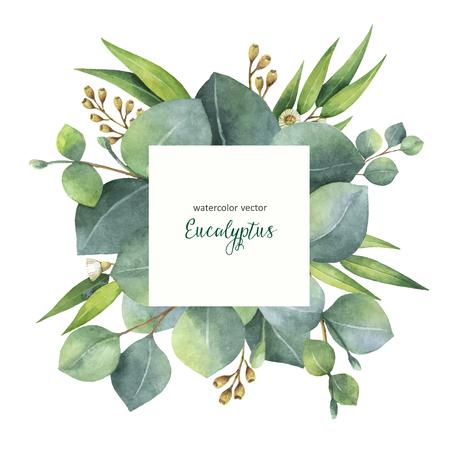 Aquarelle vecteur peint couronne carrée avec des feuilles et des branches d'eucalyptus. Herbes de guérison pour les cartes, invitation de mariage, fleurs avec un espace pour votre texte. Banque d'images - 84283116