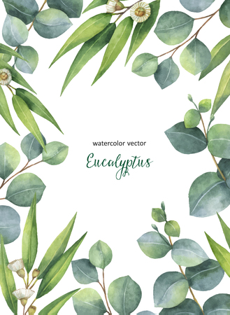 Watercolor vector hand painted green floral card with eucalyptus leaves and branches isolated on white background. Healing Herbs for cards, wedding invitation, save the date or greeting design.