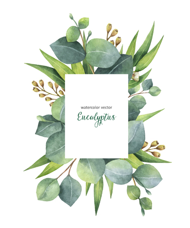 Watercolor vector green floral card with eucalyptus leaves and branches isolated on white background. Healing Herbs for cards, wedding invitation, beauty store, save the date or greeting design.