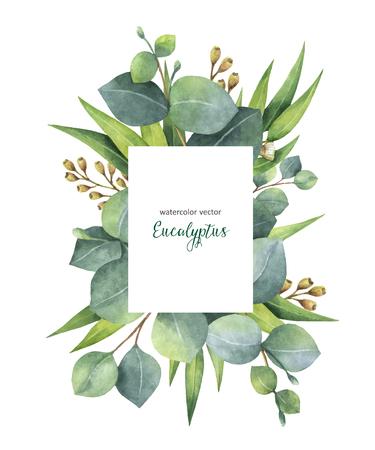 수채화 벡터 유 칼 리 나무 잎과 흰색 배경에 고립 된 분기 녹색 꽃 카드. 치유 허브 카드, 청첩장, 미용실, 날짜 또는 인사말 디자인을 저장합니다.