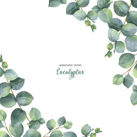 Aquarelle vecteur aquarelle floral floral avec des feuilles de papier d & # 39 ; argent eucalyptus et branches isolé sur fond blanc Banque d'images - 84468686