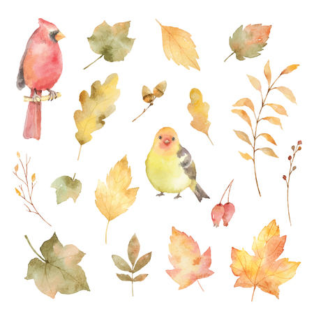 Watercolor vector autumn set of leaves and birds isolated on white background.