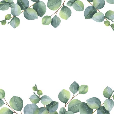 Tarjeta floral verde acuarela vector con hojas de eucalipto de dólar de plata y ramas aisladas sobre fondo blanco. Ilustración de vector