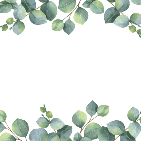 Watercolor vector green floral card with silver dollar eucalyptus leaves and branches isolated on white background. Vettoriali
