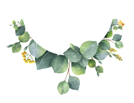 Watercolor vector wreath with green eucalyptus leaves and branches. Illustration