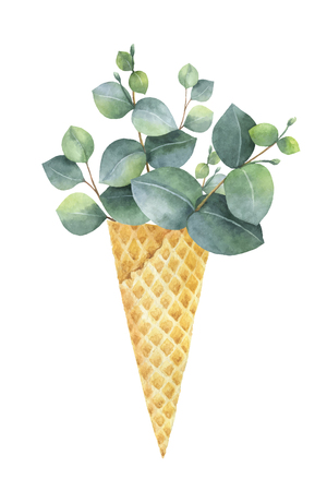 Watercolor vector creative hand painted bouquet from green leaves of eucalyptus in a waffle cone.