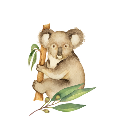 Watercolor vector green floral card with eucalyptus leaves and Koala isolated on white background.