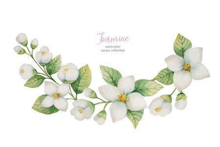 花と枝の水彩画ベクトル花輪白い背景に孤立したジャスミン。  イラスト・ベクター素材