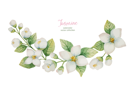 Watercolor vector wreath of flowers and branches Jasmine isolated on a white background.