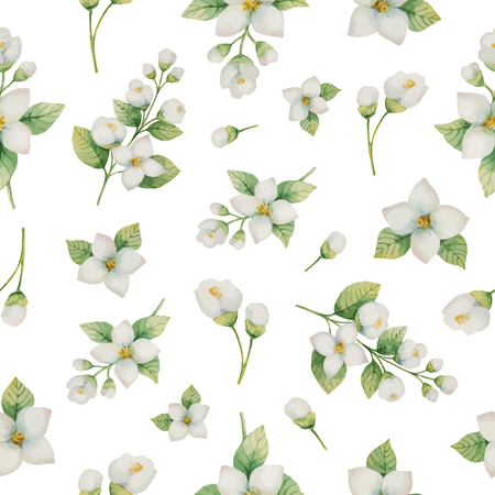 Watercolor vector seamless pattern of flowers and branches Jasmine isolated on a white background. 免版税图像 - 86223619