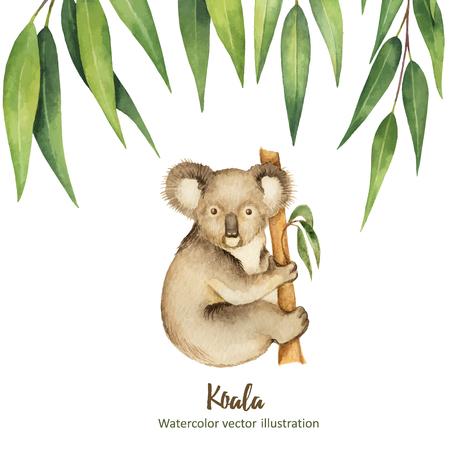 수채화 벡터 유 칼 리 나무 잎과 흰색 배경에 고립 된 코알라 녹색 꽃 카드.