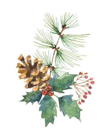 Watercolor vector Christmas bouquet with pine cone, fir branches and leaves.