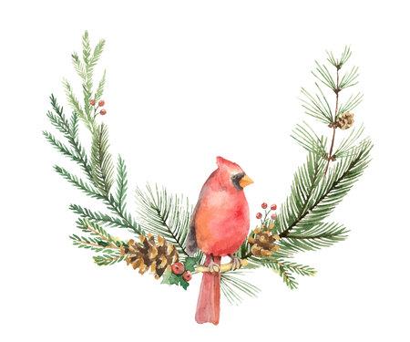 Watercolor vector Christmas wreath with Bird Cardinal and fir branches.