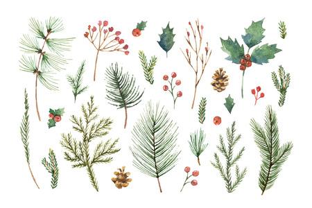 Akwarela wektor zestaw świąteczny z wiecznie zielone gałęzie drzew iglastych, jagody i liście. Ilustracje wektorowe