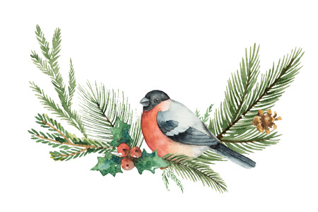 Watercolor vector Christmas wreath with fir branches and bullfinch.