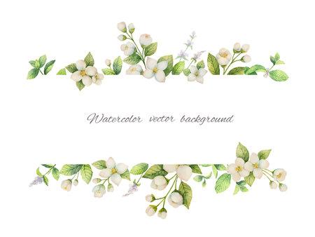 Acquerello vettore banner di fiori di gelsomino e menta rami isolato su sfondo bianco.