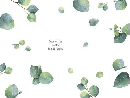 Aquarellvektorgrün-Blumenfahne mit den Eukalyptusblättern und -niederlassungen des silbernen Dollars lokalisiert auf weißem Hintergrund.