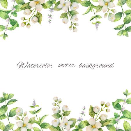 Cadre aquarelle vecteur de fleurs et de branches Jasmin isolé sur fond blanc. Vecteurs
