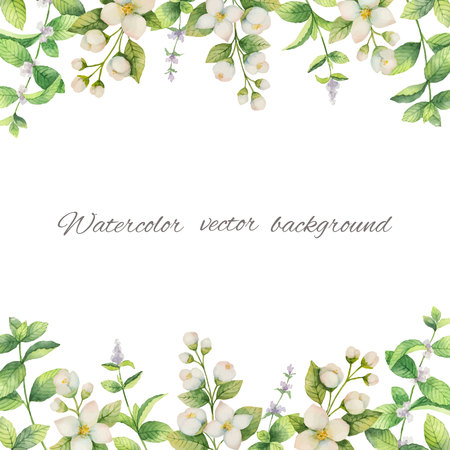 Watercolor vector frame of flowers and branches Jasmine isolated on a white background. Vetores