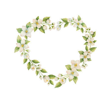 Watercolor vector frame in the shape of a heart of Jasmine flowers isolated on a white background. 矢量图像