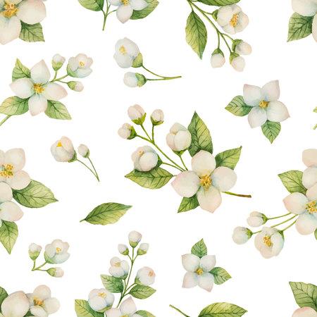 수채화 꽃과 나뭇 가지의 벡터 원활한 패턴 흰색 배경에 고립 재 스민.