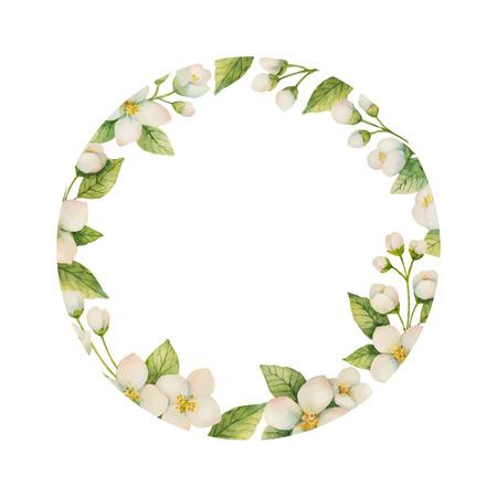 꽃과 나뭇 가지의 수채화 벡터 프레임 흰색 배경에 고립 재 스민. 일러스트
