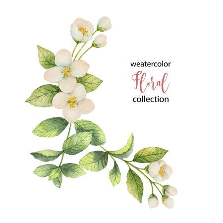 Aquarel vector krans van bloemen en takken Jasmijn geïsoleerd op een witte achtergrond. Vector Illustratie
