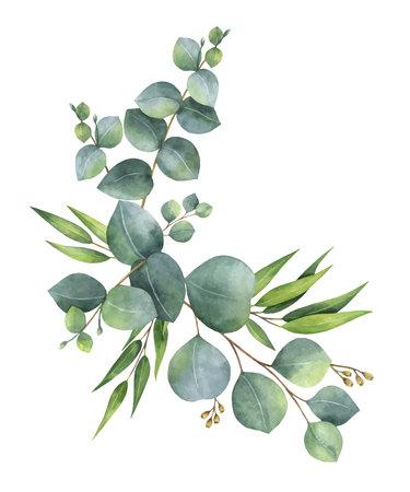 Waterverf vectorkroon met groene eucalyptusbladeren en takken. Stockfoto