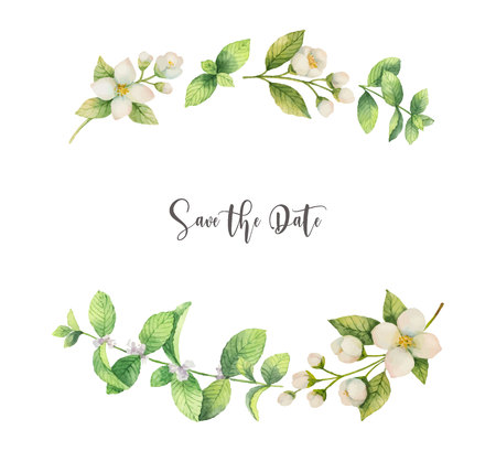 Watercolor vector wreath of flowers Jasmine and mint isolated on a white background.