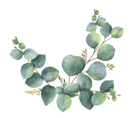 Grinalda de vetor de aquarela com folhas e ramos verdes de eucalipto. Flores de primavera ou verão para cartões de convite, casamento ou de saudação.