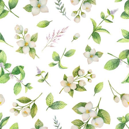 Nahtloses Muster des Aquarellvektors von den Blumen und von den Niederlassungen Jasmin lokalisiert auf einem weißen Hintergrund.